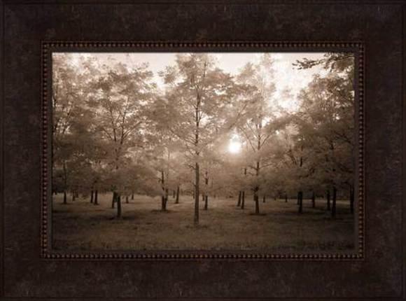 Adam-ondi-Ahman Trees (29x40 Framed Art)