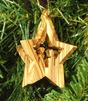 4919557_star_nativity