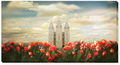 5112555_salt_lake_temple_joyful_day_panoramic_by_mandy_williams_2_cropc