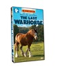 Last_warhorse