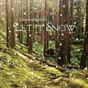 Let-it-snow-album-cover