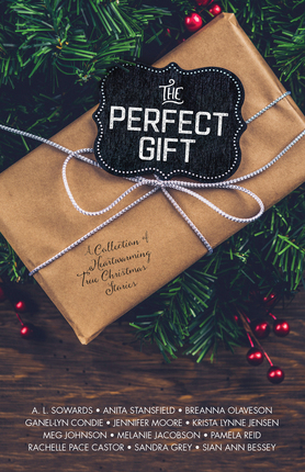 The perfect gift cover not final