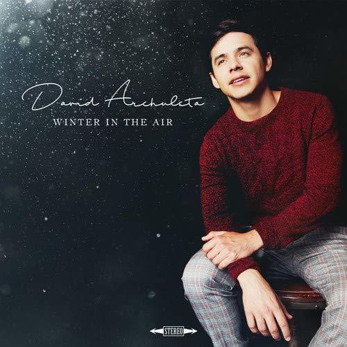Winter in the air david archuleta
